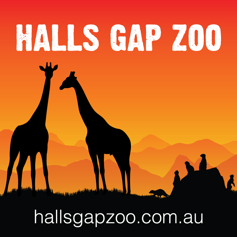 Halls Gap Zoo at the Library