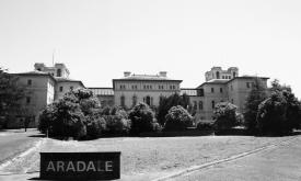 Black and white Aradale