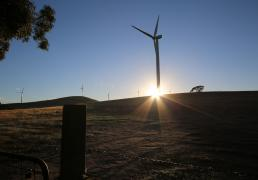 Ararat Wind Farm Sustainable Grants Program